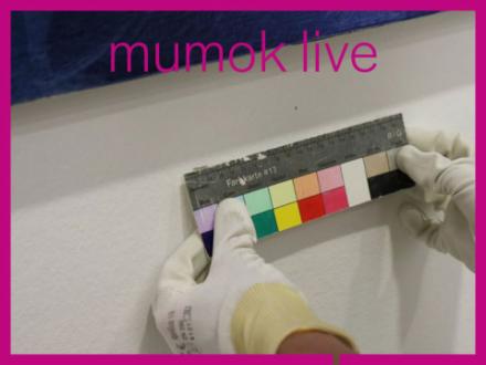 Farbkarte wird unter Bild von Heimo Zobernig befestigt