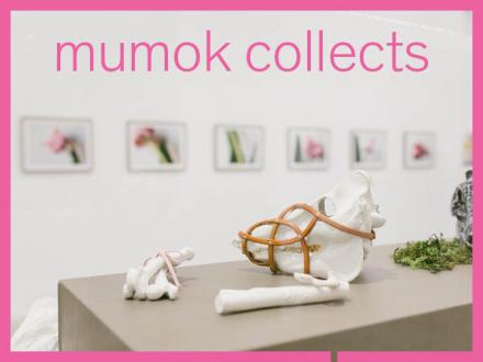 """Ausstellungsansicht der Ausstellung """"Gelebt - Ingeborg Strobl"""" Zu sehen sind Keramik Knochen und Tierschädel von ihr"""